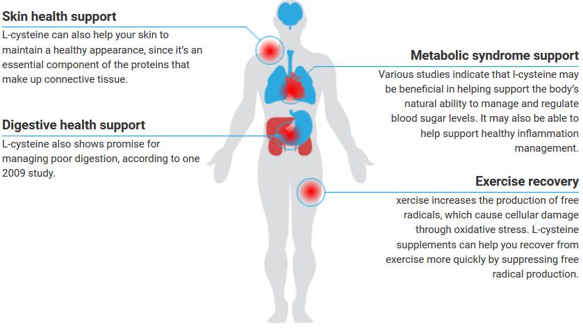 Benefits of l-cysteine